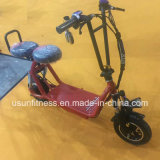 Два колеса складной электрический удар для скутера