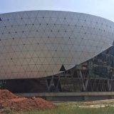 体育館の正面またはカーテン・ウォールまたはクラッディングの装飾のためのカスタマイズされたアルミニウムパネル