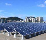 중국 PV 모듈 - 판다 265 W 단청 60의 세포 태양 전지판