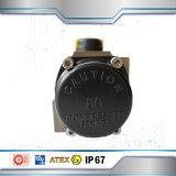Actionneur pneumatique temporaire de double de 0~90 degrés