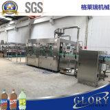 La bouteille a carbonaté la chaîne de production remplissante de boissons de bicarbonate de soude