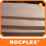 Rocplex Okoume Furnierholz 3mm-28mm, Plastikaufbau-Vorstand 15mm