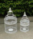 El metal decorativo Bird Cage para plantas