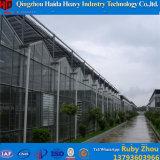 Handelsgewächshaus für Tomate-Gurke-Erdbeere