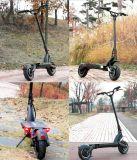 500 bicicletta piegante elettrica elettrica del motore di watt due di watt 600