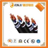 対の平行ラインケーブルの電源コードLEDケーブルの黒及び赤