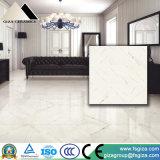 Mattonelle di pavimentazione di pietra lustrate Polished rustiche di esterno 600*600mm (JA80110PMQ)