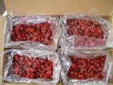 Hot Sale fraise séchés avec du sucre