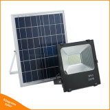 Recharegeable 50W/100W panel solar al aire libre Powered Farol LED para iluminación de césped de la calle