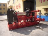 디젤 엔진에 의하여 화재 싸움 펌프세트 Drived