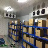 Puerta deslizante, cámara fría, unidad de condensación