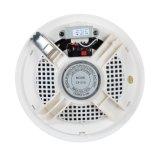 Bester Pirce Decken-Lautsprecher für allgemeine Lautsprecheranlage