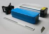 BMSの保護の10ah 48V力電池LiFePO4電池のEバイク電池