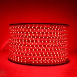 Luz de tira del LED con PU 220V para la iluminación de interior y al aire libre