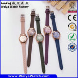 Customize Leather Strap Alloy Case Casual Quartz Wrist Watches (WY-114A)