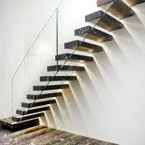La barandilla moderna Mable que cerca con barandilla de cristal del acero inoxidable de la escala camina escalera