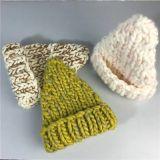 Heißer Verkaufs-kundenspezifischer Winter-Frauenbeanie-Hut-Barett-Hut