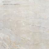 Высокое качество керамическими плитками на полу (600x600)