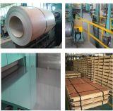 Qualität trug Edelstahl-Ring-Hersteller im China-Markt auf