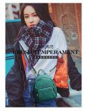 Les femmes Sac 2017 Nouvelle édition coréenne Sac en toile