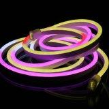 Couleurs multi de lumière au néon flexible de corde changeant le néon de RVB