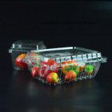 Wegwerfmaschinenhälften-Blasen-Plastikhaustier-Frucht-Behälter-verpackentellersegment-Kasten