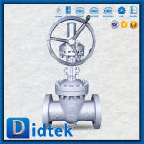 De Klep van de Poort van het Type van Wig van Wcb van Didtek voor Gas