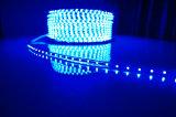LED 지구 빛이 12V SMD5050 LED 리본에 의하여 점화한다