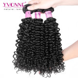 8Aイボンヌの毛のマレーシアの巻き毛のブラジルのバージンの毛の拡張