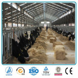 良質の軽量の低価格の鉄骨構造の農場の構築