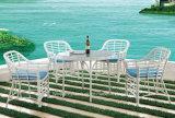 Rattan della mobilia del giardino che pranza mobilia di alluminio esterna stabilita impostata (TG-JW62)