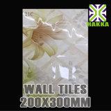 De witte Ceramische Tegel 20X30 Cm van de Muur van de Keuken