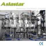 Bicarbonate de soude automatique personnalisé de bouteille étincelant la machine de remplissage de l'eau
