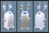 La pérdida de peso de material ABS de adelgazamiento cavitación Cryolipolysis Aparatos de belleza RF