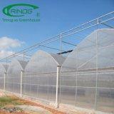Le film en plastique couverts green house pour la vente