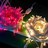 IP65 im Freien Gummikabel-Weihnachtsgummidraht-Zeichenkette-Lichter des Gebrauch-LED