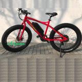 Bafang 전동기 지방질 유형을%s 가진 눈 바닷가 산 전기 자전거