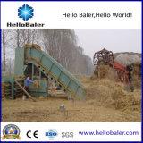 Automatische het In balen verpakken van het Stro Machine voor Katoenen Steel, Houten Spaanders