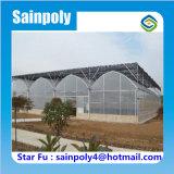 La estructura de acero galvanizado de efecto invernadero Setas