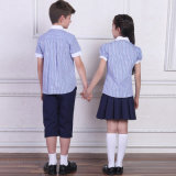 Boys와 Girls를 위한 주문 Summer School Uniform Blue Strips Shirt
