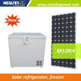Kühlraum-Solarauto-Kühlraum Gleichstrom-315L/Auto-Gefriermaschine
