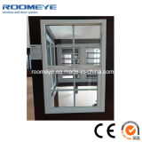 American Style PVC Single Hung Windows avec prix d'usine