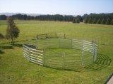 楕円形の柵の牛パネル