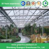 Kommerzielles Stahlkonstruktion-Polycarbonat-Blatt-Gewächshaus für Blume und Gemüse