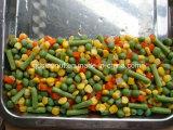 Овощи хорошего качества хорошим законсервированные ценой смешанные