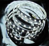 Tira los 60LEDs/M de SMD5050 LED
