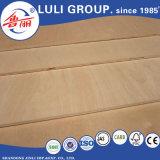 Contreplaqué de bois de placage hêtre pour meubles