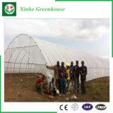 Serre di plastica della multi portata di agricoltura per piantare