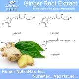 100% натуральные экстракт корня имбиря