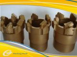 Morceau de foret de PDC avec 12 garnitures intérieures